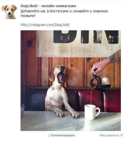 kak-stat-populjarnym-v-instagrame-1