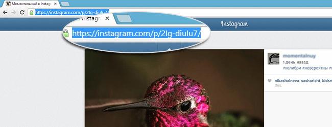 Как из вконтакте скачать фото с инстаграмма